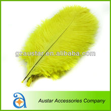 Ostrich feather factory wholesale dyed ostrich feather for wedding centerpieces