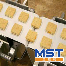 Biscuit candy conveyor belt