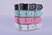 Dog Collar solid multi colors