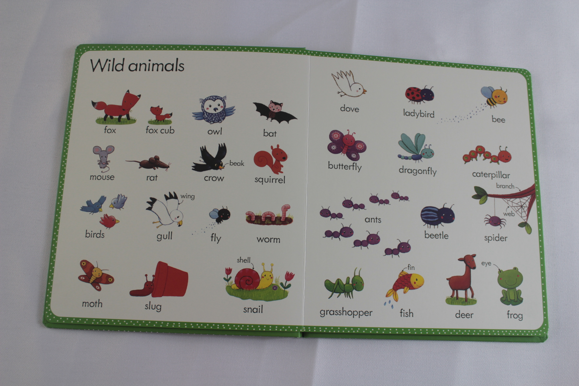 Customized My First Word Book about Farm for Children Learning English Coloring Book