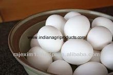 Table Egg for Iran Market