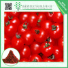 Natural health antioxidant Tomato Extract lycopene 10% powder lycopene antioxidant e300 antioxidant