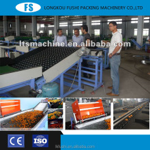 made in china fruit cleaning waxing selection machine mandarin and orange grading sorting machine. fruit washing and wa