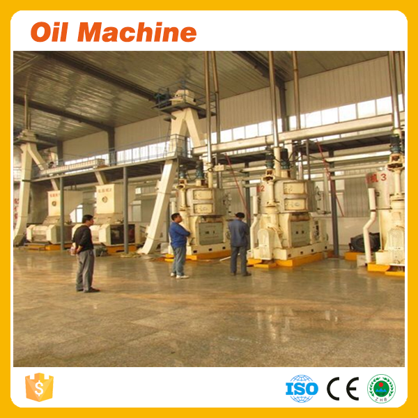 Low meal residual oil rate 60TPD yellow maize oil machine price for products of maize from maize oil making machinery