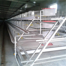 A type multi-tier battery hen used chicken breeding cage