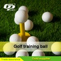 2 Pieces Golf Ball for practice ball and range ball