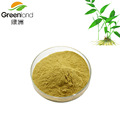 100% Pure Natural Lophatherum Herb Extract Powder