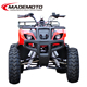 2015 New Shaft Driving China Cheap Electric Quad ATV 2000W