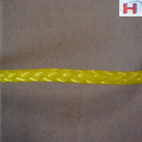 professionally produce PP/PE hollow yellow plastic rope