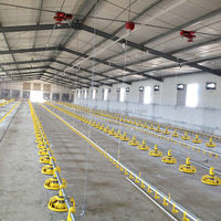 Huabo poultry farming equipment for chicken farm