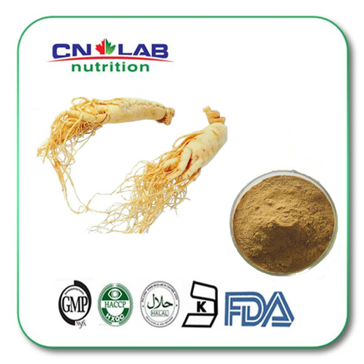 Factory Price for best ginseng/ginseng herb 80% Ginsenosides
