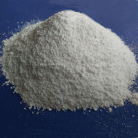 Food Preservative White Powder Sodium Benzoate