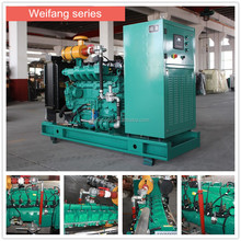 Low noise!! 10kw-500kw power natural gas generator 10kw 20kw 50kw 100kw 200kw 300kw natural /biogas generator manufacture price