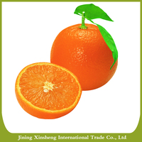 Sell China fresh navel orange