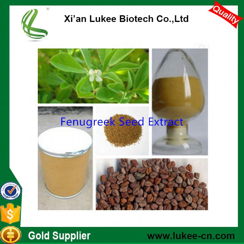 Fenugreek Extract Powder 50% 4-hydroxyisoleucine/FDA Approved Fenugreek Seeds Extract