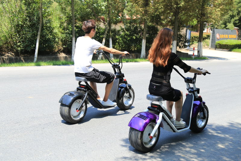City Mobility Citycoco 1200W Brushless Adult Electric Scooter 2 Wheels Electric Motorcycle