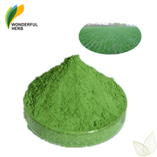 Organic supplement pure wheatgrass juice extract Wheat Grass Powder