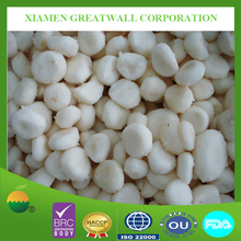 bulk frozen vegetables IQF water chestnut slices from China