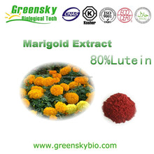 Professional factory supply natural pigment marigold flower extract / marigold extract / lutein