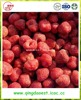 Wholesale Hot sale shandong bulk healthy fruit 25-35mm frozen IQF fresh strawberry