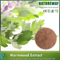 Best Extract supplier Virgate Wormwood Herb Extract