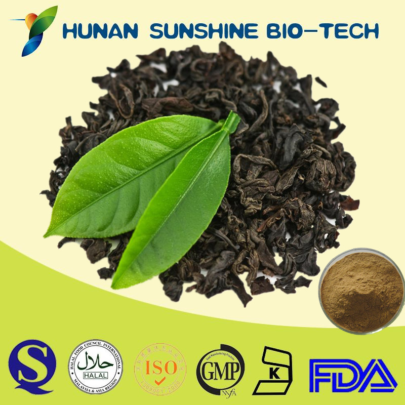 CAS NO.: 4670-05-7 Natural Anti-oxidant Black Tea Extract 25% Theaflavins