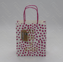 Customized Printed Logo Gift and Craft Paper Bag with Hang Tag