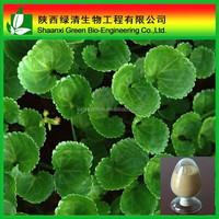 Supply High quality Centella asiatica extract Centella asiatica Asiaticoside 10%-90% HPLC