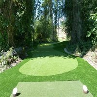 High Standard Easy Installation Synthetic Lawn For Golf