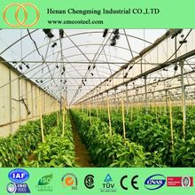 Cheap saw-tooth agricultural greenhouse /farming greenhouses