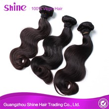 Wholesale Brazilian 6A 100% Genesis Virgin Hair
