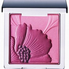 Beauty and Fashion Makeup supplier mineral blush cosmetics