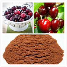 100% Nature Indian Acerola Cherry Extract