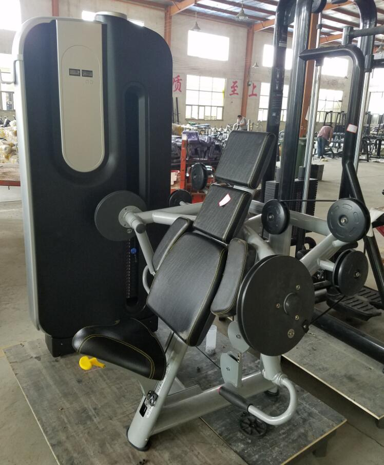 Dual Function Station Biceps / Triceps Muscle Machine for Gym Use Fitness Club Equipment