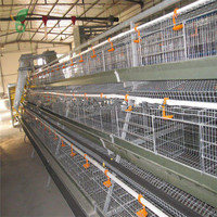 Poultry Farm Equipments Used Chicken Cages for Sale