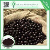 Super Antioxidant 100% Natural Plant Extract Acai Berry Extract,Acai berry powder