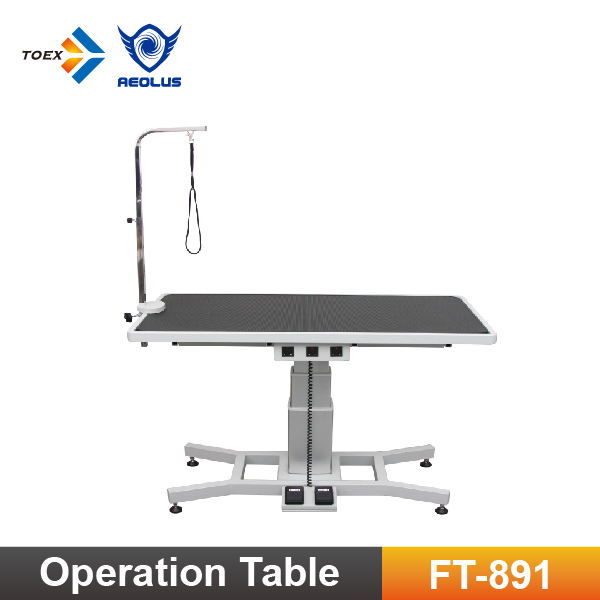 FT-891 Elevating Pet Dog Grooming Table with Vertical Lift Column Pet Products