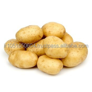 fresh yellow potato for sale, round, middle size