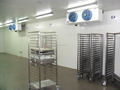 Fresh egg coldroom/chiller room/cold storage with refrigerated equipment