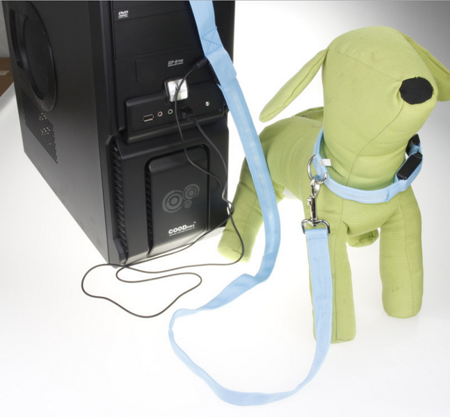 LED Dog Leash - USB Rechargeable - Make Your Dog More Visible & Safe - 6 Colors
