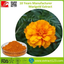 Manufacturer Supply Marigold Extract Powder