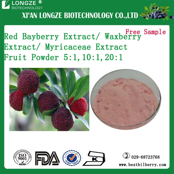 Natural Spray Dried Red Bayberry Fruit Extract Powder /Myricaceae Powder for food flavor addictive