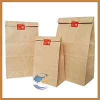 Top level professional brown paper bag for grape growing