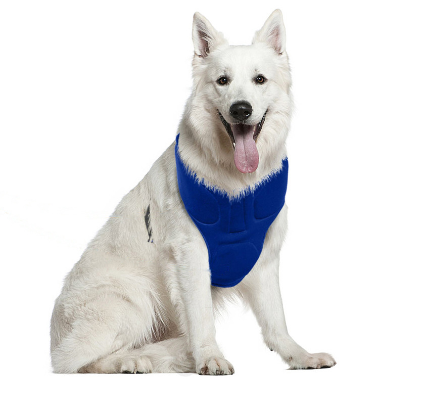 pet dog gel cooling vest