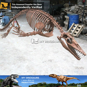 Animal Skeleton Model Mammoth of My Dinosaurs