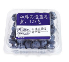 Clear disposable plastic blueberry container