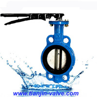 Ductile Iron body No pin one stem butterfly valves