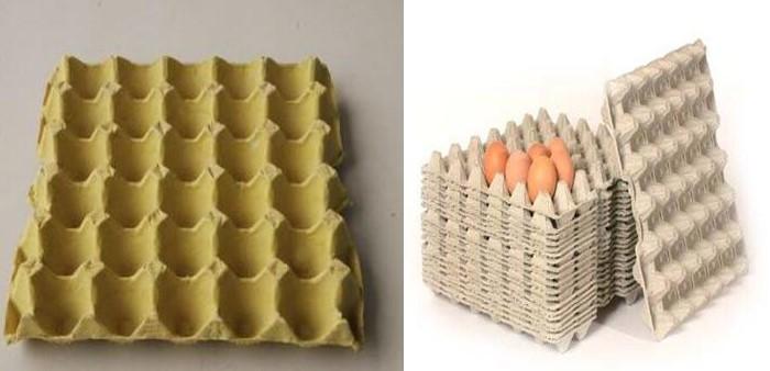 egg tray egg carton