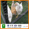 /product-detail/anping-hexagonal-mesh-hexagonal-wire-netting-chicken-mesh-iso9001-2008-professional-manufacturer--1703364142.html