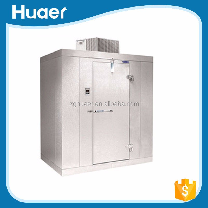 Hot sale Fruits and vegetables blast freezer cold room Cold storage equipment for meat
